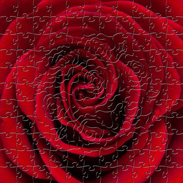 Red Rose Wooden Jigsaw Puzzle Composite
