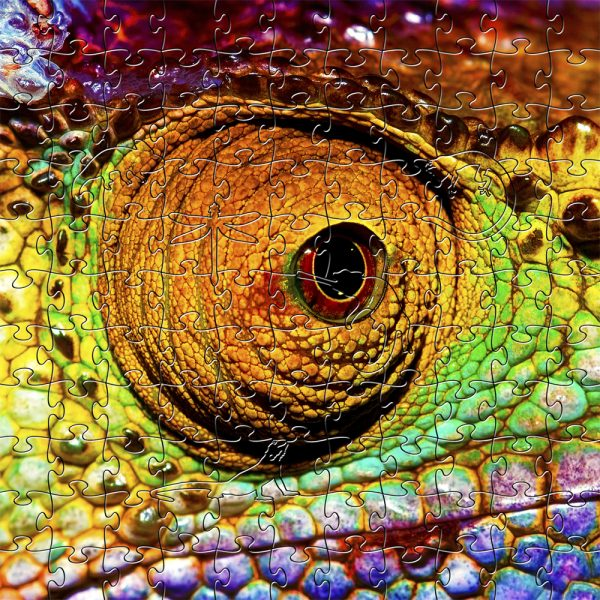 Chameleon Wooden Jigsaw Puzzle Small Composite 1000x1000px